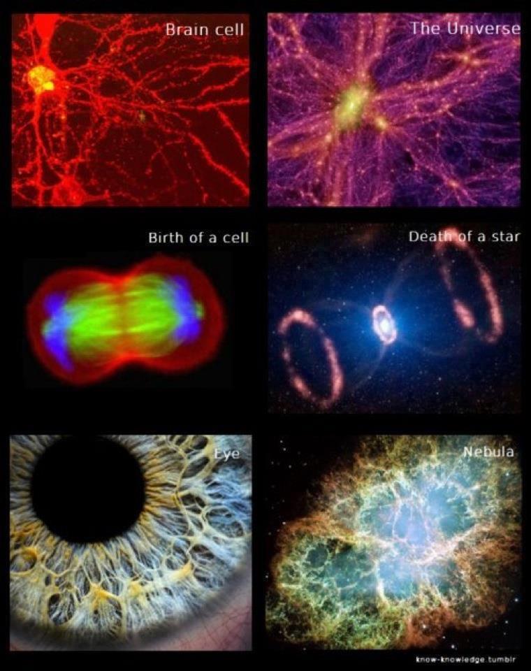 kozmikus történelem